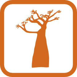 tree removal experts cranston ri